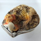 Eighteenth century shell and silver snuff box