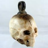Seventeenth Century Stag Antler Skull